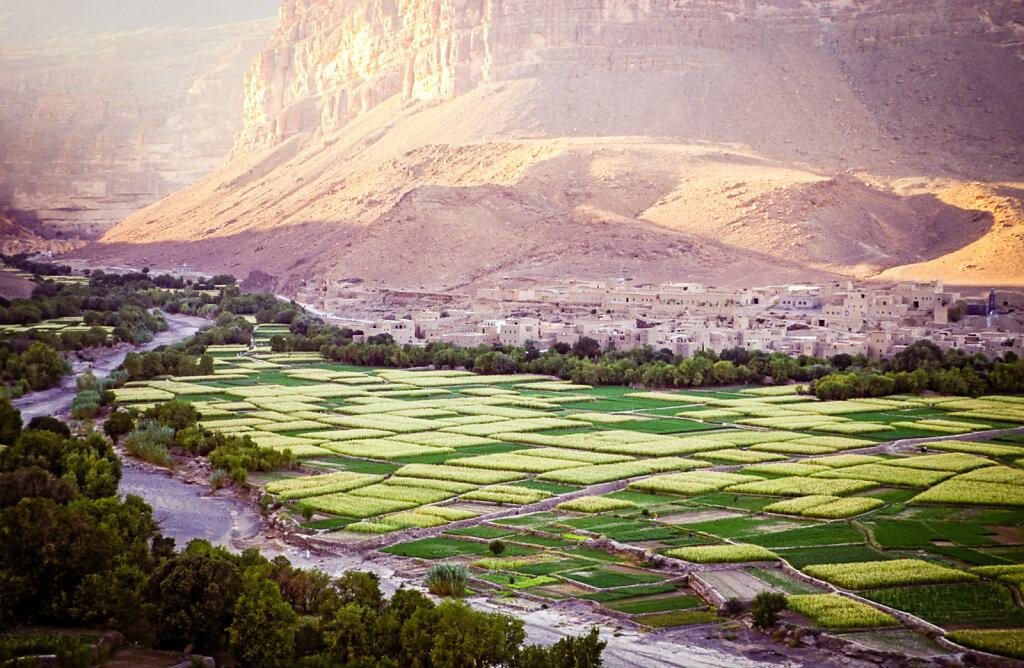 maroco01.jpg